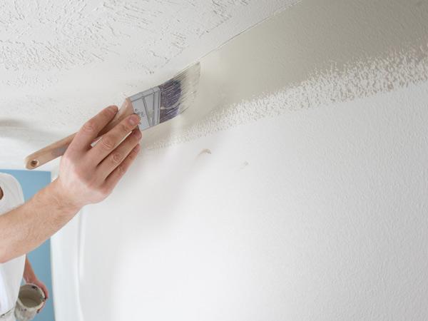 Eliminare la muffa brescia manerbio pittura antimuffa - Vernice per muro interno ...